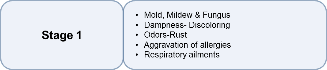 Mold, Mildew & Fungus Dampness Discoloring Odors Rust Aggravation of allergies