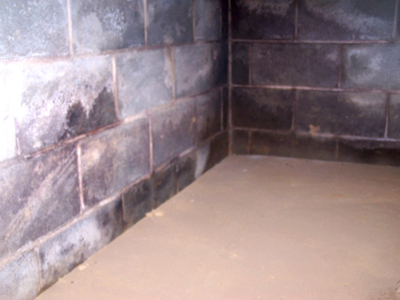 Damp Basement, Leaky- and Wet Basement